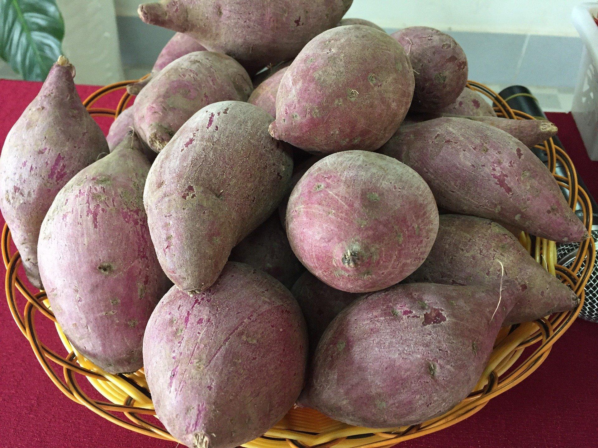 Purple Sweet Potatos